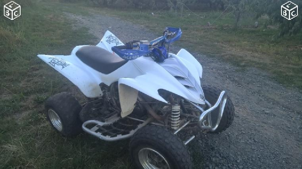YAMAHA YFM 350 R Raptor  2008 photo 1