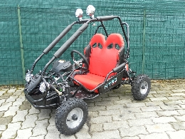 Buggy / SSV occasion : AUCUNE Buggy 50