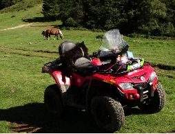 Quad occasion : CAN-AM BOMBARDIER Outlander 400 max efi