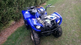 Quad occasion : YAMAHA Grizzly 125 Bleu
