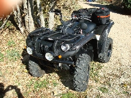 Quad occasion : YAMAHA Grizzly 550 camo