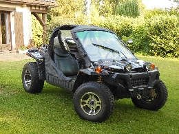 Buggy / SSV occasion : BUYANG FA-G 450
