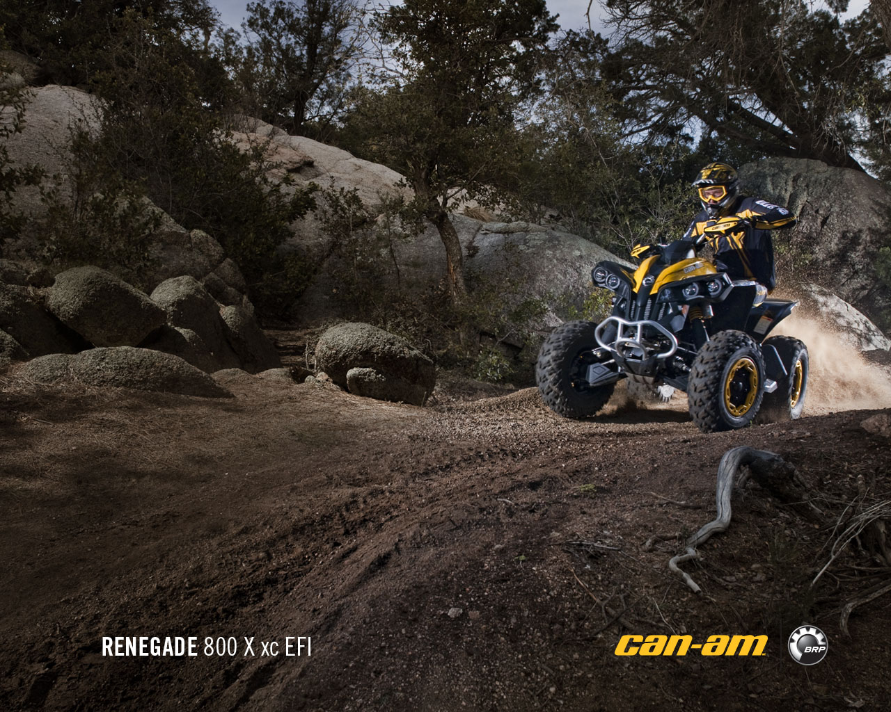 CAN-AM BOMBARDIER Renegade 800 R X xc 2011 photo 3