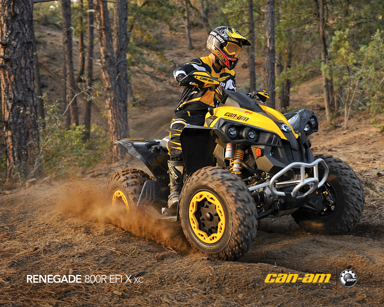 CAN-AM BOMBARDIER Renegade 800 R X xc 2011 photo 4