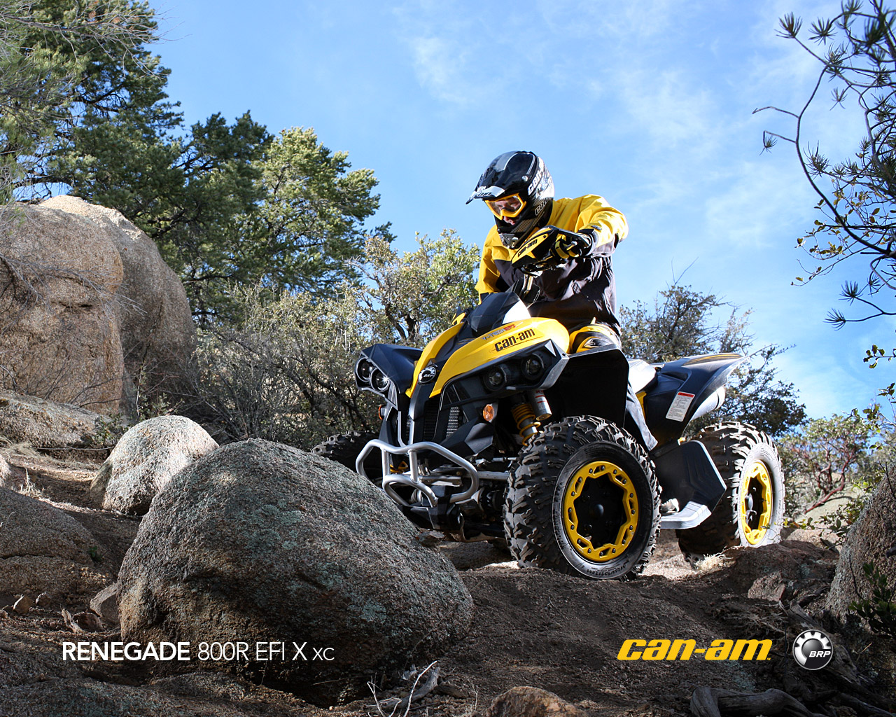 CAN-AM BOMBARDIER Renegade 800 R X xc 2011 photo 5