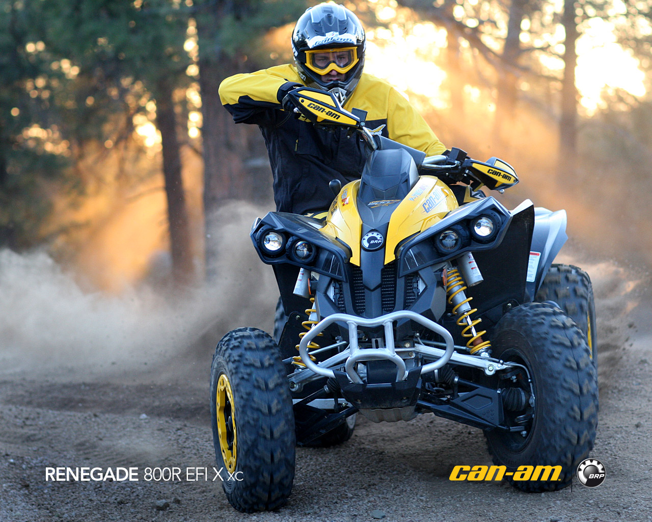 CAN-AM BOMBARDIER Renegade 800 R X xc 2011 photo 6