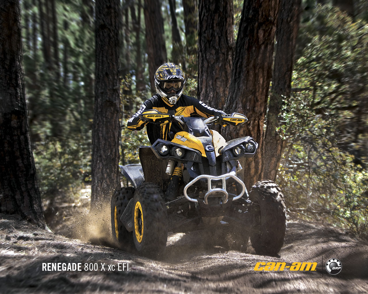 CAN-AM BOMBARDIER Renegade 800 R X xc 2011 photo 7
